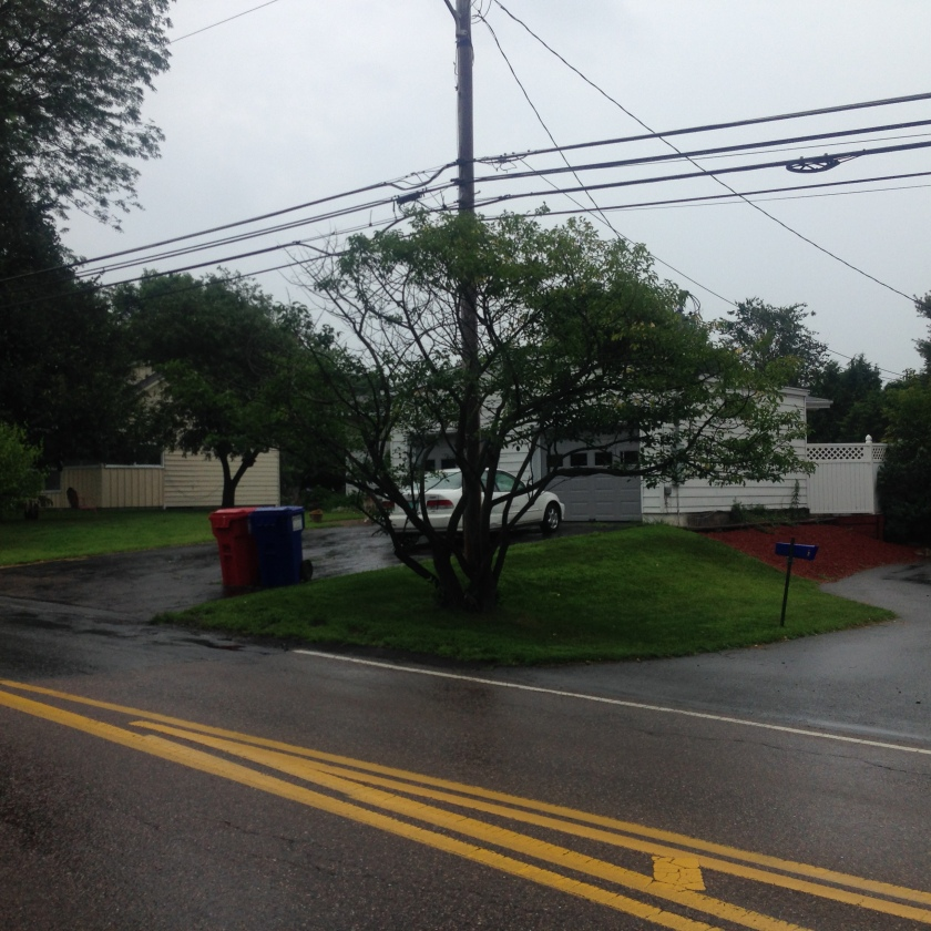 320 Spear Street as it appears today. Notice how narrow the roadway is, causing all the cards to be towed. Gig was in backyard facing Interstate 89.